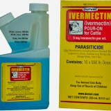 Durvet-Ivermectin-Pour-On-For-Cattle-Cows-250mL-Free-Shipping-FDA-Approved-1